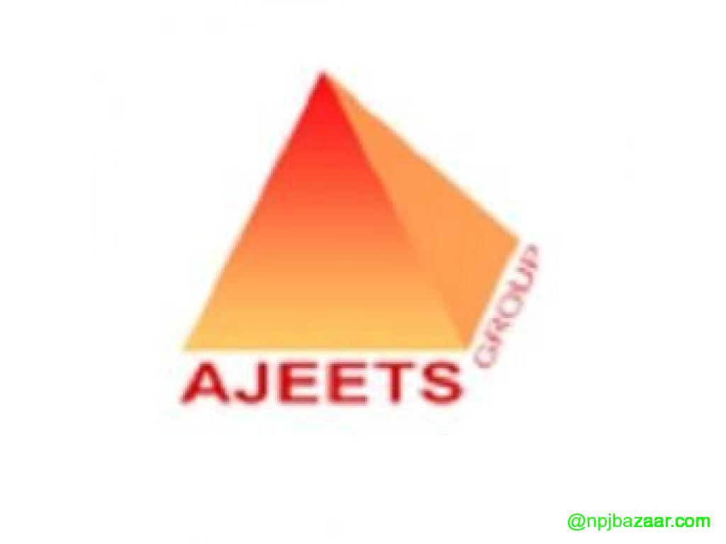 Al Ajeets Management and Outsourcing Pvt Ltd